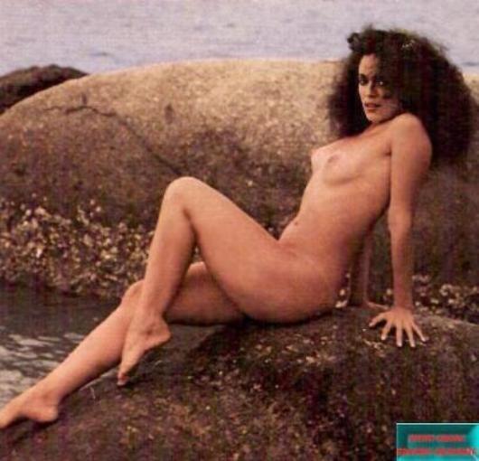 Ha estado Sarah Chalke desnuda
